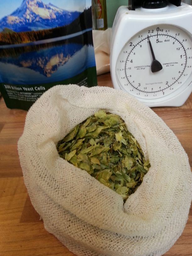 Hops in muslin bag